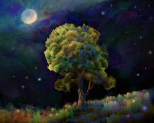 the conscious nest night tree