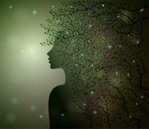 the conscious nest tree hair